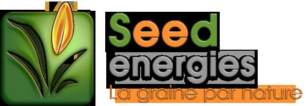 Seedenergies